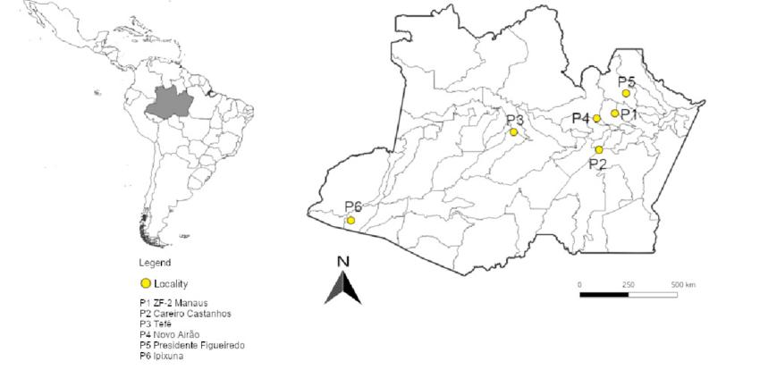Location of ZF-2 Manaus, Careiro-Castanho, Tefé, Novo