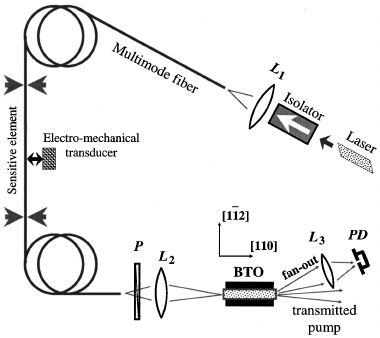 Optical schematic of the multimode fiber-optic sensor with
