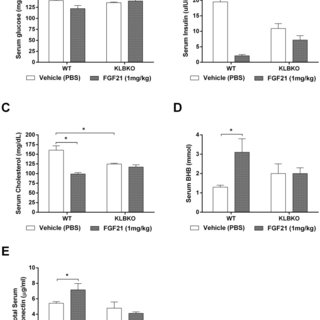 (PDF) FGF21 Requires βklotho to Act In Vivo