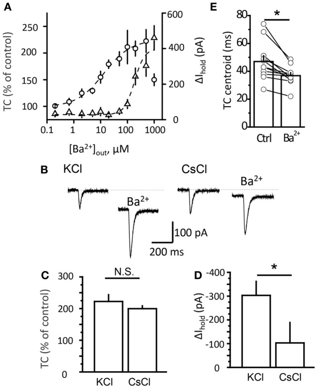 essential amino acids diagram