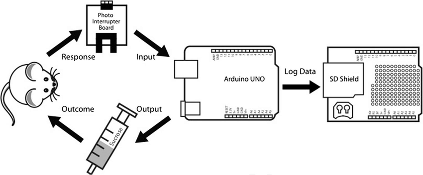 Diagram of the ROBucket's electronic circuit. A photo