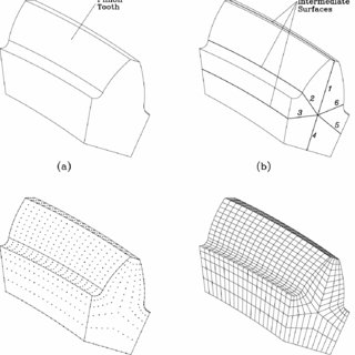 -Structure of shaper and face-gear tooth surface: (a