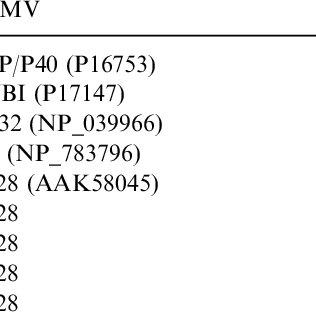 (PDF) Simian Cytomegalovirus Encodes Five Rapidly Evolving
