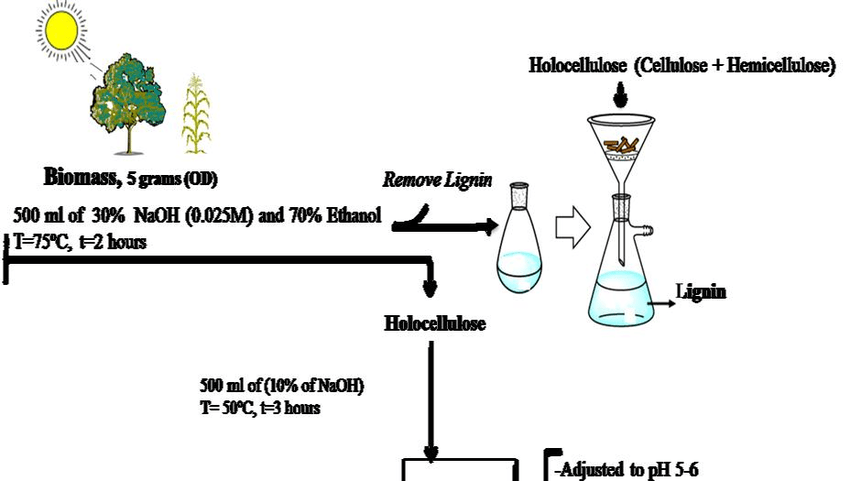 Schema for extraction of hemicellulose from biomass