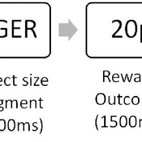 (PDF) The role of reward and reward uncertainty in
