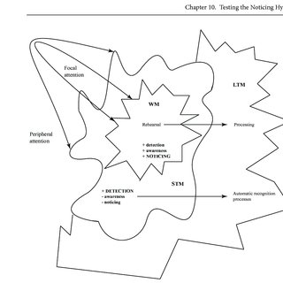 (PDF) A procedure for testing the Noticing Hypothesis in