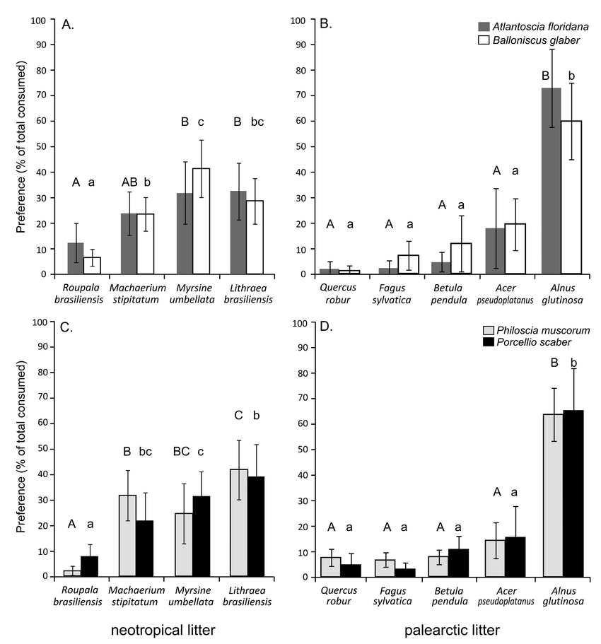 Feeding preferences of terrestrial isopods. A. Neotropical