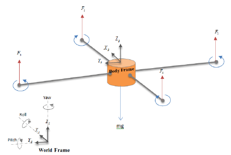 Schematic diagram showing the coordinate systems and