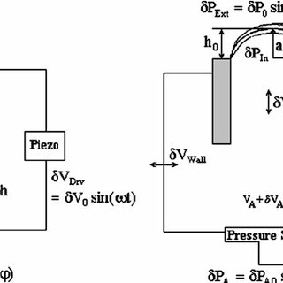 (PDF) Rheology of interfacial layers