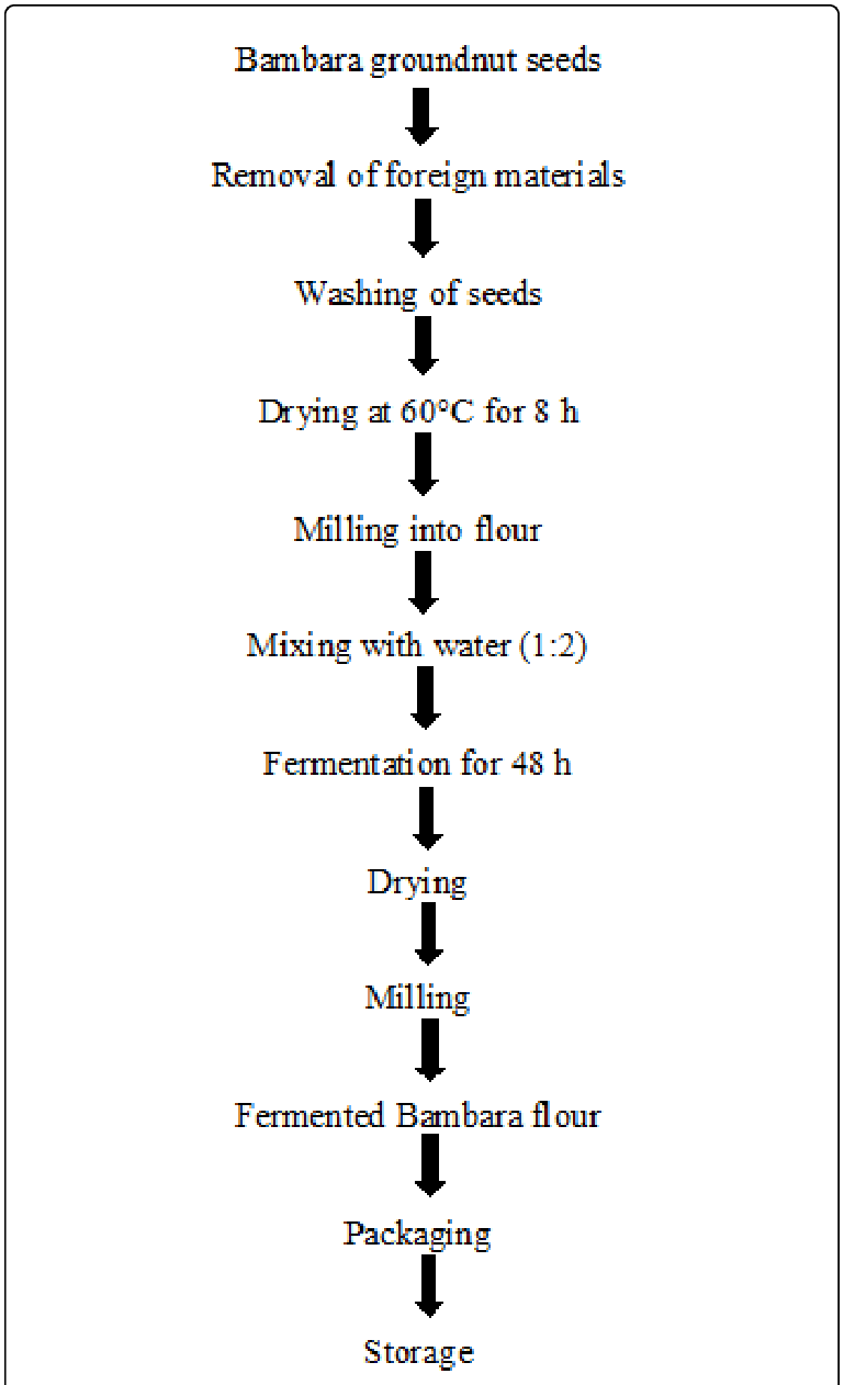 Process flow chart for the production of fermented Bambara