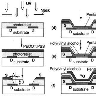 Schematic of an organic permeable base transistor. The