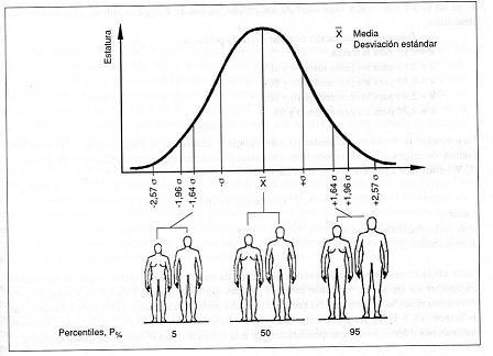 Curva Normal de percentiles (5,50 y 95) de las estaturas