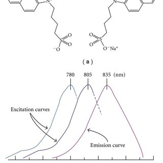 Endogenous absorption related to wavelength. HHb