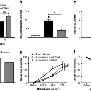 Absence of tumor necrosis factor-related apoptosis