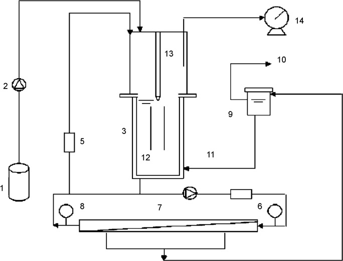 Schematic diagram of the experimental set-up. 1: raw