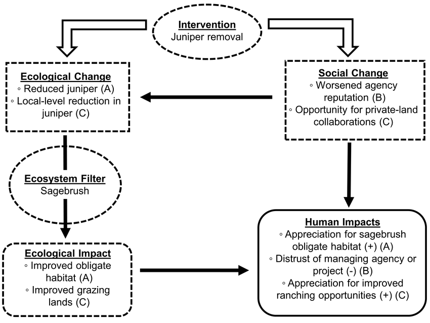 project impact diagram garden light wiring flow of the social ecological assessment framework modified from slootweg et al 2001 begins with an intervention i e