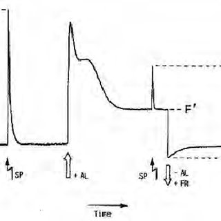 The basic principles of excitation and deexcitation