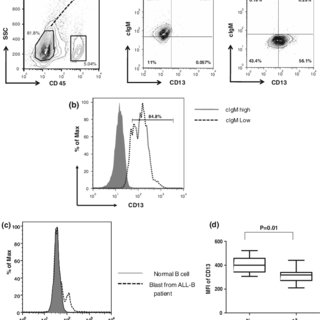 (PDF) Expression of CD13/aminopeptidase N in precursor B-cell leukemia: Role in growth