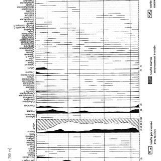 Cuadramôn I. Percentage pollen and concentration diagram