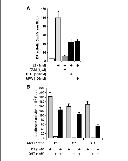 Inhibition of ER activity by AR. A, transactivation