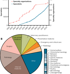 clinical specialization in veterinary medicine the numbers of download scientific diagram [ 850 x 1011 Pixel ]