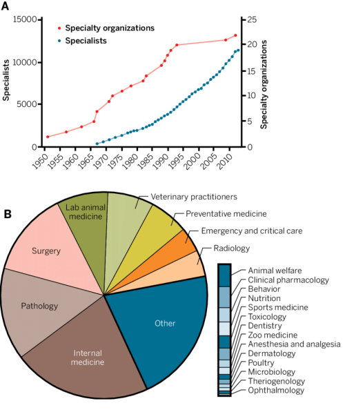 small resolution of clinical specialization in veterinary medicine the numbers of download scientific diagram