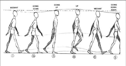 The natural cycle of human movement in virtual environment