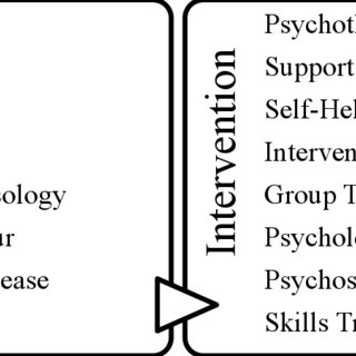 Search terms used to identify psychosocial intervention