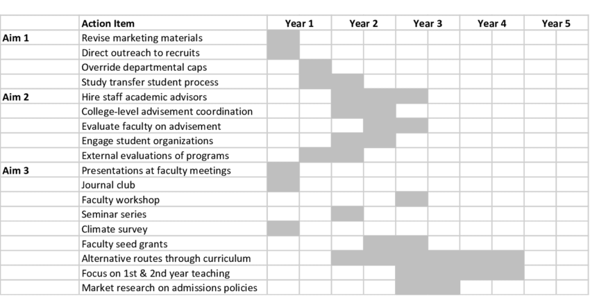 Gantt Chart showing 5-year implementation of detailed