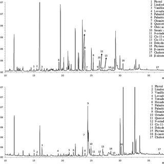 GC-MS chromatograms of the Eireira orthostat red pigment