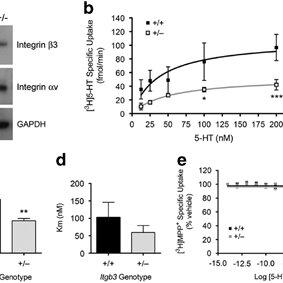 (PDF) Integrin β3 Haploinsufficiency Modulates Serotonin