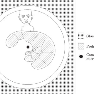 (PDF) A Novel Device for Grasping Assessment during