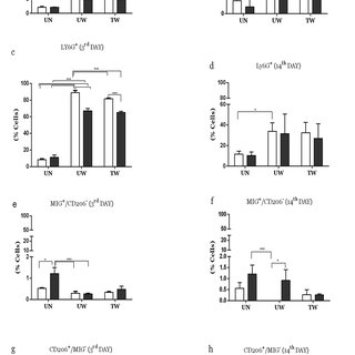 Vitamins E and C improve dermis during wound healing in