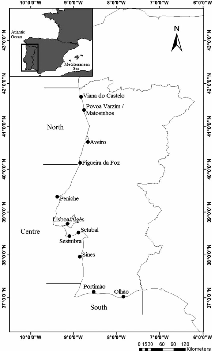 hight resolution of distribution along the portuguese continental coast of purse seining ports used in this study areas