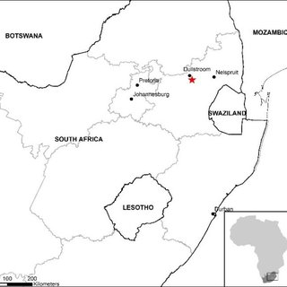 (PDF) Freshwater crayfish invasions in South Africa: what