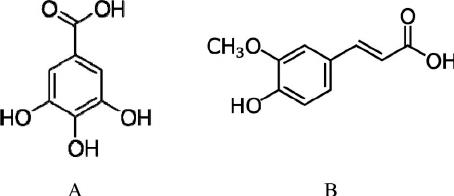 The activity of ferulic and gallic acids in biofilm