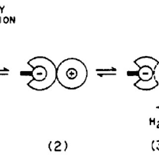1. Schematic diagram of a polymer electrolyte fuel cell