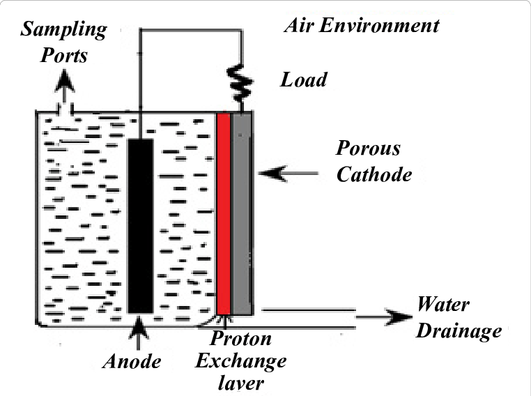 Schematic diagram of single-chamber microbial fuel cells