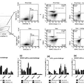 (PDF) Lactobacilli and Bifidobacteria Promote Immune