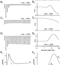 effects of facilitation and cdr on presynaptic dynamics a 1effects of facilitation and cdr on presynaptic [ 850 x 1333 Pixel ]