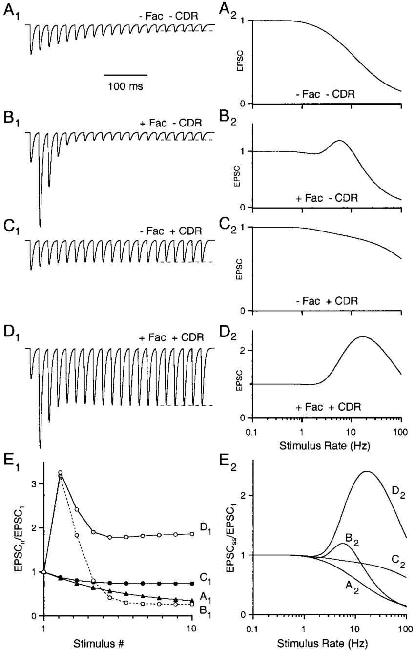 hight resolution of effects of facilitation and cdr on presynaptic dynamics a 1effects of facilitation and cdr on presynaptic
