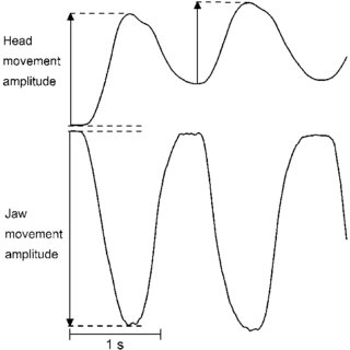 (PDF) Jaw-opening accuracy is not affected by masseter