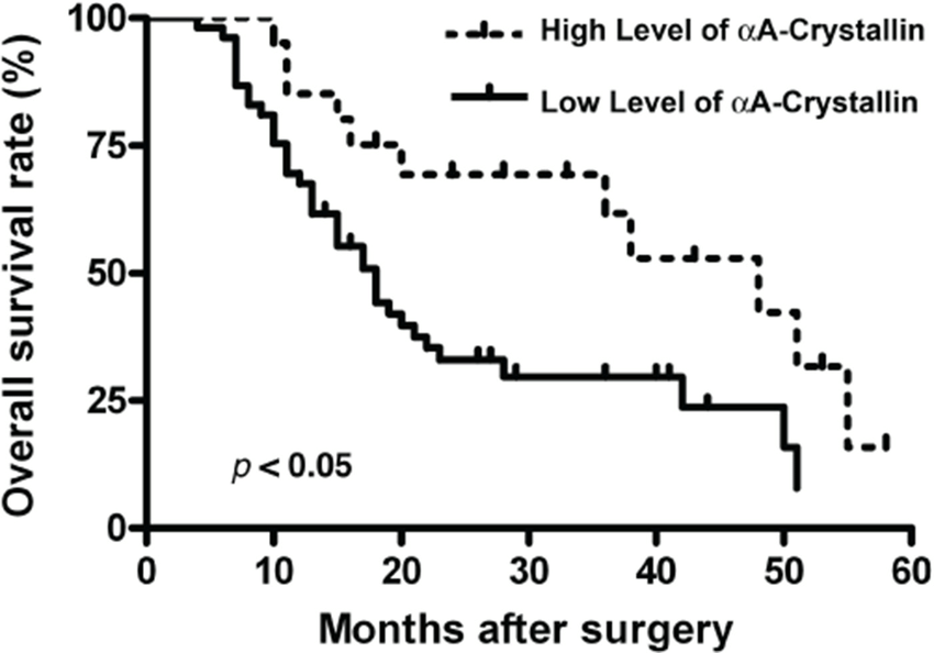 Prognostic significance assessed by Kaplan-Meier survival