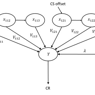 3: Two theories of stimulus representation. Dashed lines