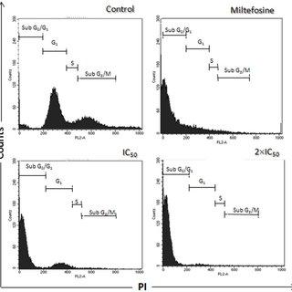 Late exponential-phase promastigotes of Leishmania