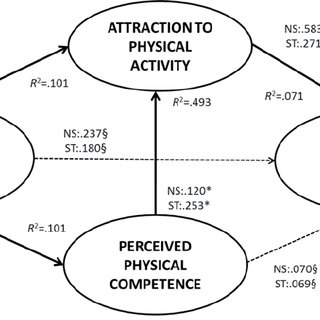 (PDF) Evaluating the youth physical activity promotion