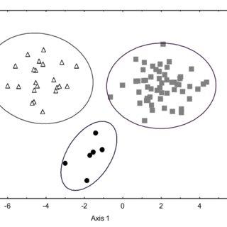 (PDF) Morphology of the franciscana (Pontoporia