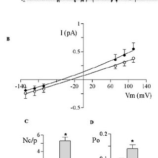 Effect of S-CMC-Lys (100 μ M) treatment on anion channel