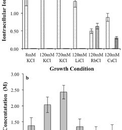 intracellular ion concentrations a individual potassium lithium rubidium and cesium concentrations potassium [ 714 x 1459 Pixel ]