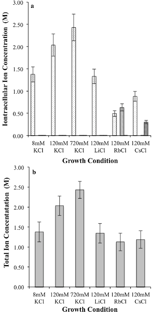 small resolution of intracellular ion concentrations a individual potassium lithium rubidium and cesium concentrations potassium